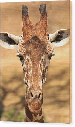 Wood Print featuring the photograph Giraffe by Elizabeth Budd