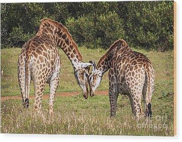 Giraffe Love Wood Print
