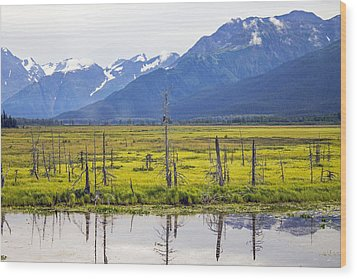 Girdwood Sunken Trees 1 Wood Print by Saya Studios