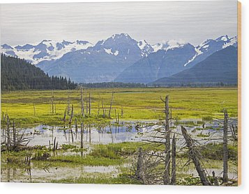Girdwood Sunken Trees 2 Wood Print by Saya Studios