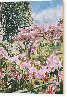 Giverny Rhododendrons Wood Print by David Lloyd Glover