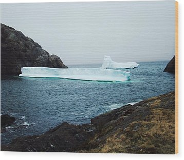 Glacial Beauty Wood Print by Zinvolle Art