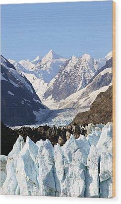 Wood Print featuring the photograph Glacier Bay Alaska by Sonya Lang