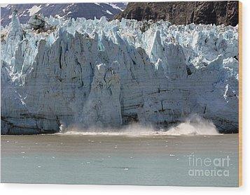 Glacier Bay Alaska Wood Print by Sophie Vigneault
