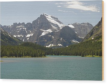 Glacier National Park Wood Print by Larry Moloney