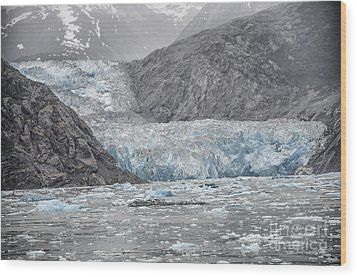 Glacier Tracy Arm Fjord Wood Print by JRP Photography