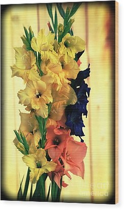 Wood Print featuring the photograph Gladiolus  2013 by Marjorie Imbeau