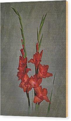 Gladiolus I Wood Print