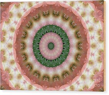 Gladiolus Pink And Green Abstract Mandala Wood Print by MM Anderson