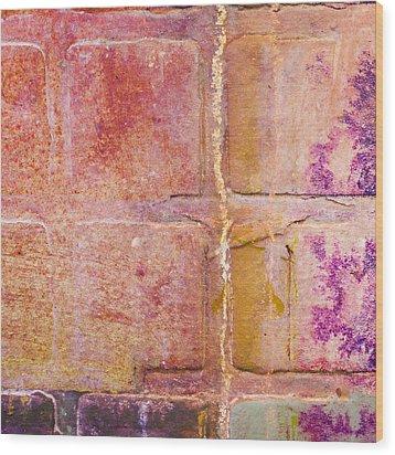 Glass Crossings 2 Wood Print by Carol Leigh