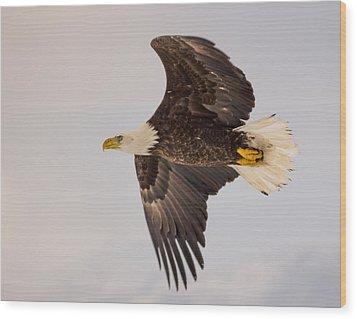 Glide Profile Wood Print by Jeremy Farnsworth
