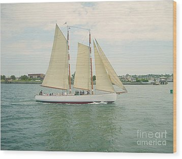 Gliding In Full Sail Wood Print