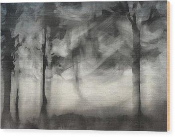 Glimpse Of Coastal Pines Wood Print by Carol Leigh