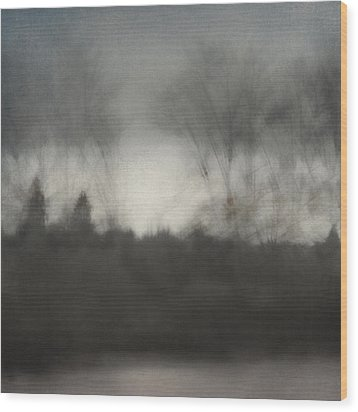 Glimpse Of The Willamette Wood Print by Carol Leigh