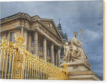 Wood Print featuring the photograph Gloires De La France by Ross Henton