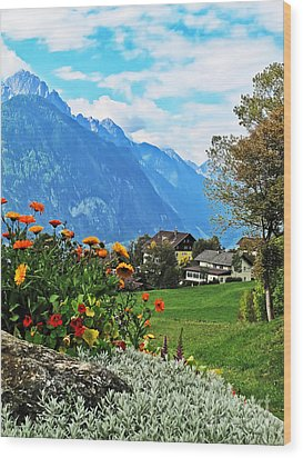 Glorious Alpine Meadow Wood Print