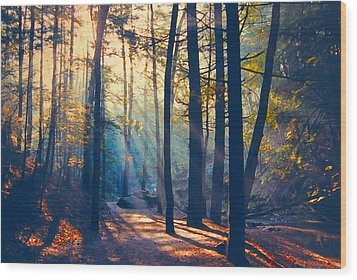 Glorious Forest Morning Wood Print by Diane Alexander