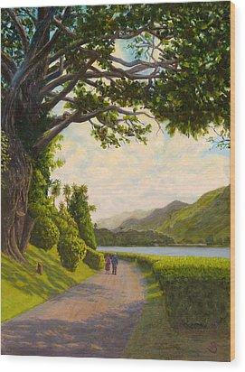 Glorious Galway Wood Print