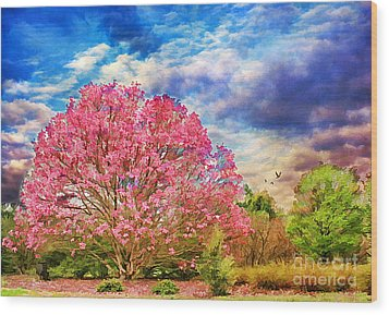 Glorious Spring Wood Print by Darren Fisher