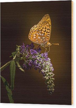Glow Bug Wood Print by Janis Knight