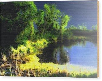 Glowing Pond On A Foggy Night Wood Print by Ann Almquist