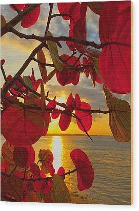 Glowing Red Wood Print