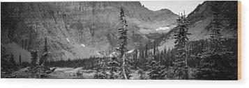 Gnarled Pines Wood Print