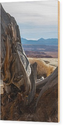 Gnarly Desert Cypress In Utah Wood Print by Michael Flood