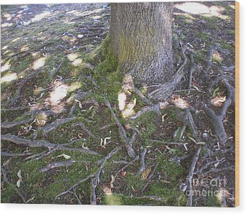 Wood Print featuring the photograph Gnarly by Suzanne McKay