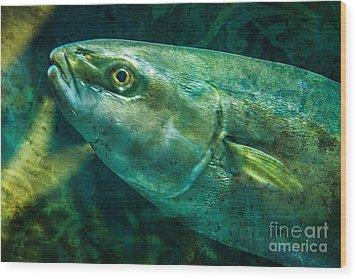 Go Fish 2 Wood Print by Pam Vick