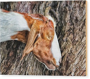 Wood Print featuring the photograph Goat 3 by Dawn Eshelman