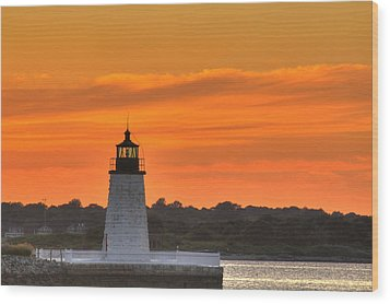 Goat Island Light Wood Print