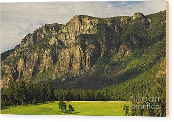 Goat Mountain Wood Print