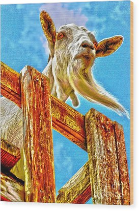 Goat Up High Wood Print by Annie Zeno