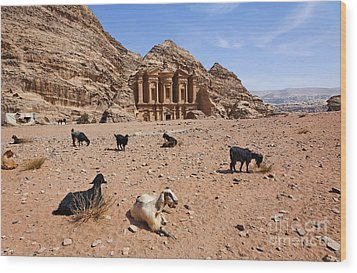 Goats In Front Of The Monastery At Petra In Jordan Wood Print by Robert Preston