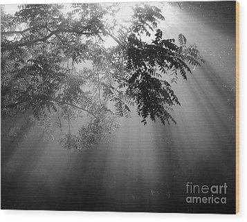 God Rays Wood Print by Douglas Stucky