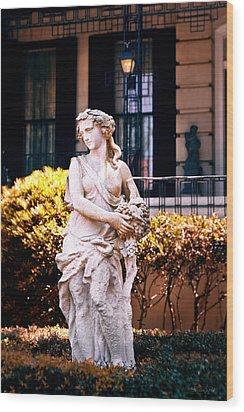 Goddess Of The South Wood Print