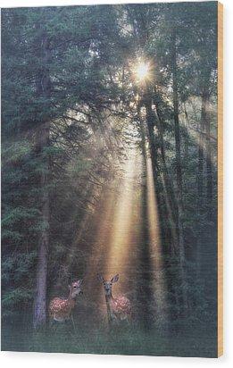 God's Creatures Wood Print by Lori Deiter