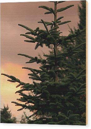 God's Gift Wood Print by Jeanette C Landstrom