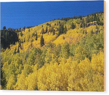 Wood Print featuring the photograph Going Gold by Fortunate Findings Shirley Dickerson