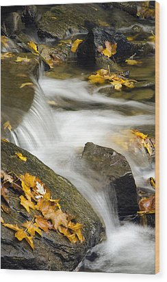 Going With The Flow Wood Print by Christina Rollo