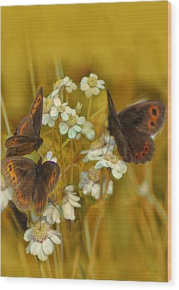Gold And Brown Wood Print by Jacqi Elmslie