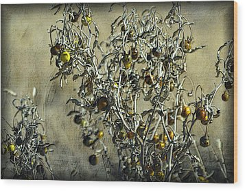 Wood Print featuring the photograph Gold And Gray - Silver Nightshade by Nadalyn Larsen
