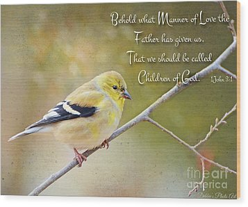 Gold Finch On Twig With Verse Wood Print by Debbie Portwood