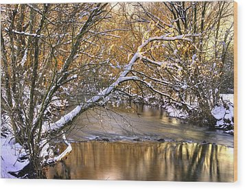Gold In The Creek B1 - Owens Creek Near Loys Station Covered Bridge - Winter Frederick County Md Wood Print by Michael Mazaika