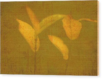 Gold Leaves Wood Print by Suzanne Powers