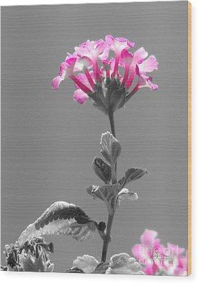 Golda Wood Print by Robert ONeil