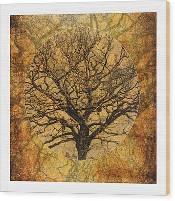 Golden Autumnal Trees Wood Print by Lenny Carter