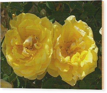 Golden Beauty Wood Print by Jewel Hengen