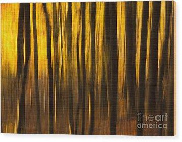 Golden Blur Wood Print by Anne Gilbert